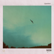 Question - single - front cover